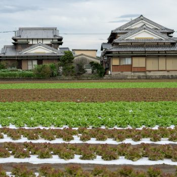 田舎の家と農地