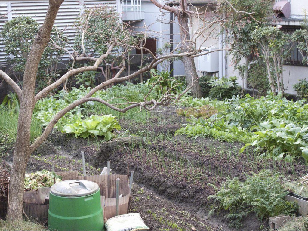 使用貸借事例の自家農園